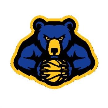 Alcester-Hudson High School - Boys Varsity Basketball