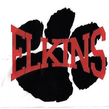 Elkins High School - Girls' Varsity Basketball