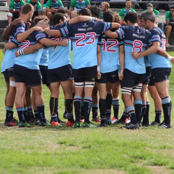 Marist North Harbour Rugby & Sports Club - Marist Premiers