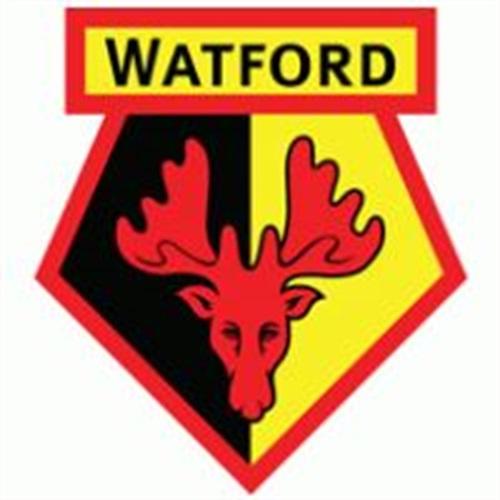 Watford FC Academy - Watford FC U12