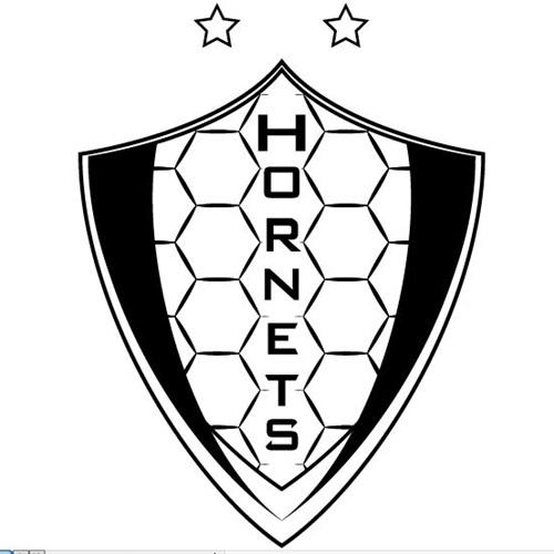 Savannah Country Day School - Boys' Varsity Soccer