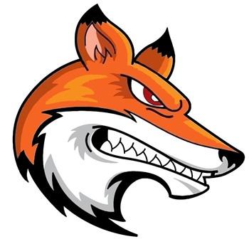 Tabor Foxes - Tábor Foxes