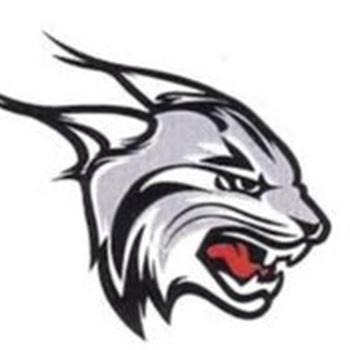 Brandon Valley High School - Boys' Freshman Basketball