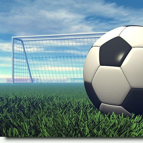 West Potomac High School - Girls' Varsity Soccer