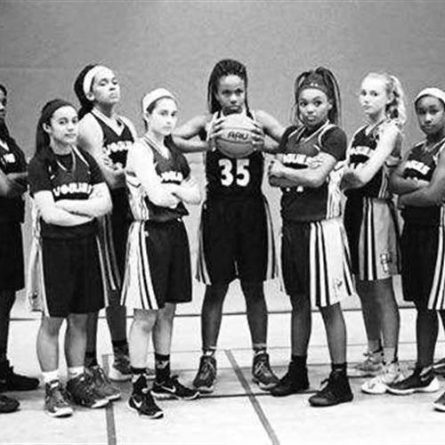 Vogues Basketball - 2017 7th Grade National Team