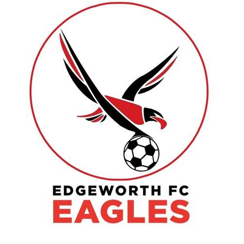 Edgeworth Eagles - Edgeworth Eagles