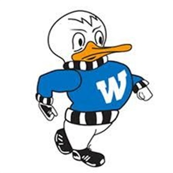 Watertown High School - Boys Varsity Baseball