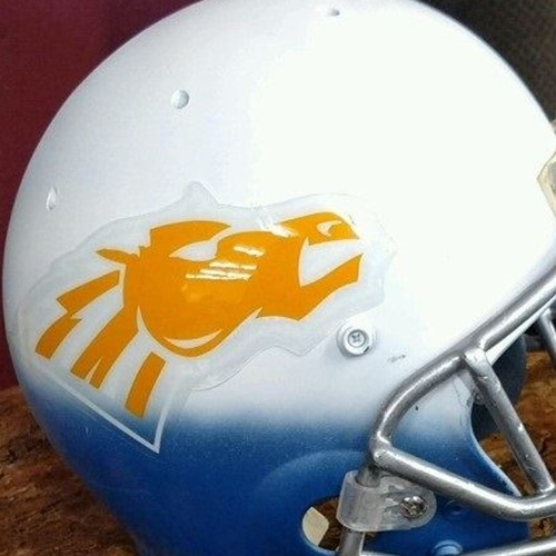 Great Falls Central Catholic High School - Varsity Football