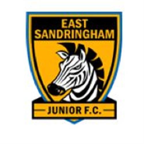 East Sandringham Junior Football Club - Under 14's Div 1
