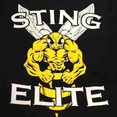 Worcester Sting - Worcester Sting - 10U Boys