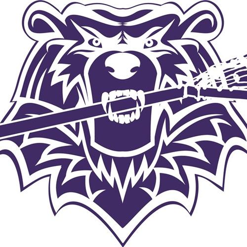 Tech Valley Lacrosse - 2017 Teams