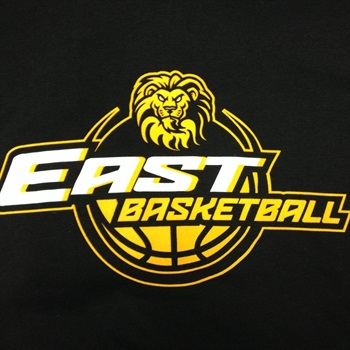 Fort Zumwalt East High School - Girls Varsity Basketball
