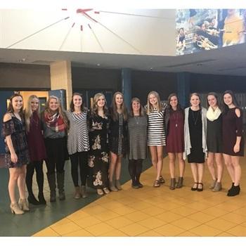 Le Sueur-Henderson High School - Girls' Varsity Volleyball