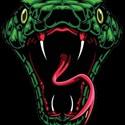 Atlanta Venom - Atlanta Venom