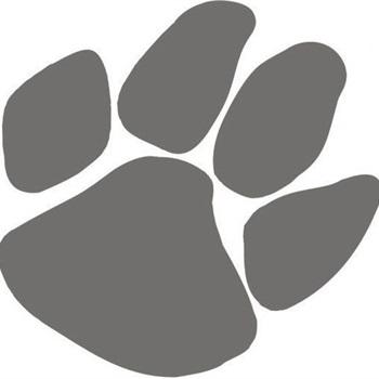 Wildcat Junior Football Association- GEJFA - Cub White