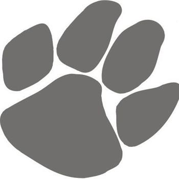 Wildcat Junior Football Association- GEJFA - Sophomore