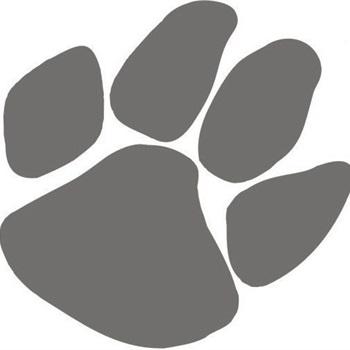 Wildcat Junior Football Association- GEJFA - JV White