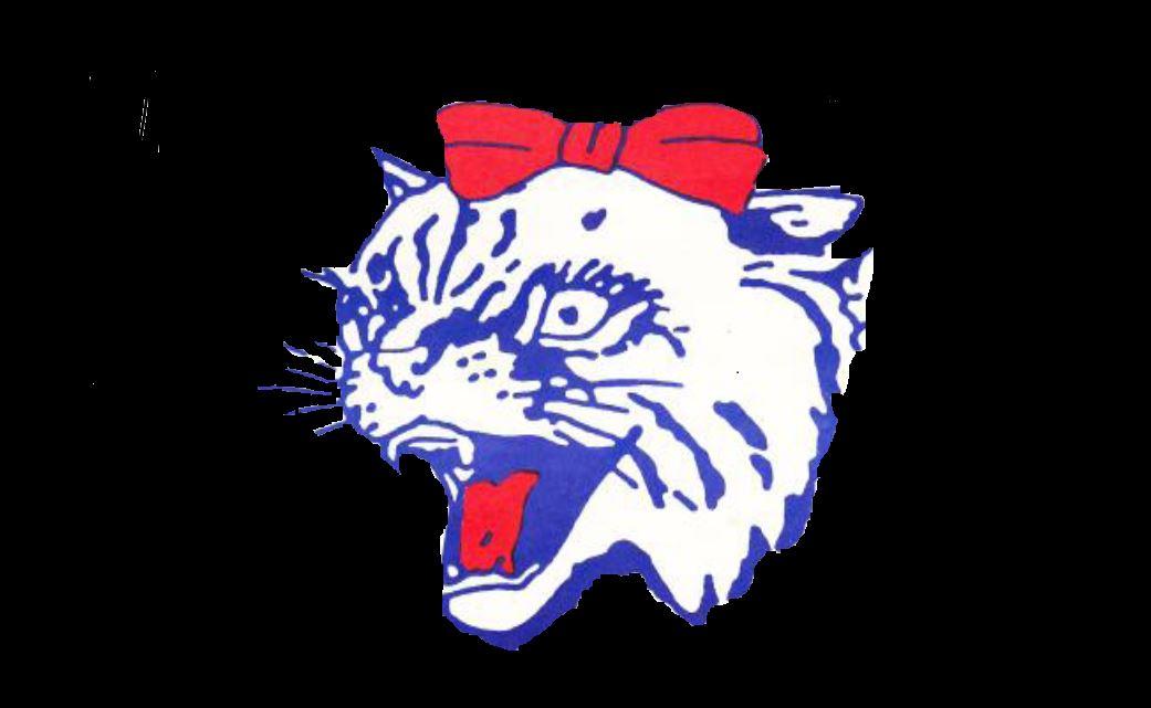 Temple High School - Girls' Varsity Basketball