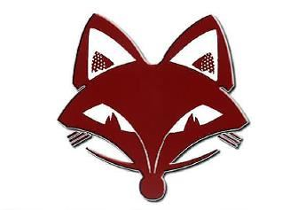 Fox Valley Lutheran High School - Boys Varsity Basketball