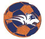 Wakeland High School - Boys Varsity Soccer