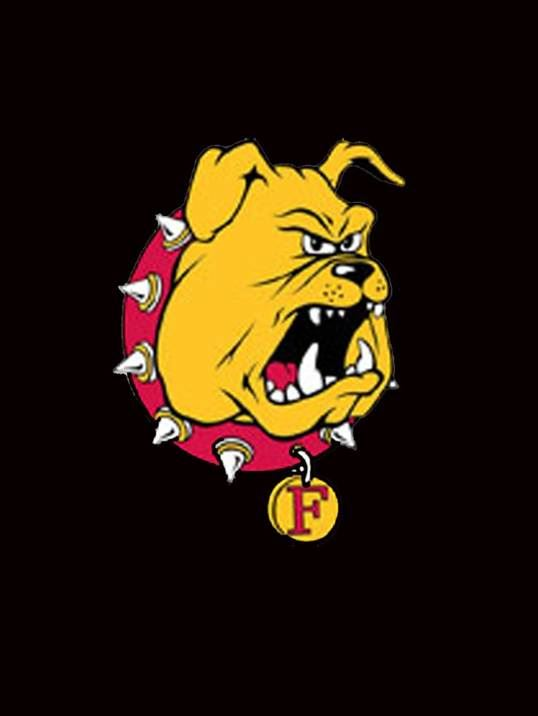 Bulldog Football Ferris State University Big Rapids Michigan