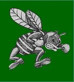 Pemberton High School - Hornet Football