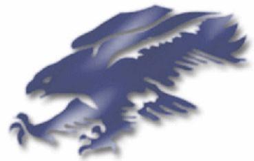 Fitch High School - Boys Varsity Football