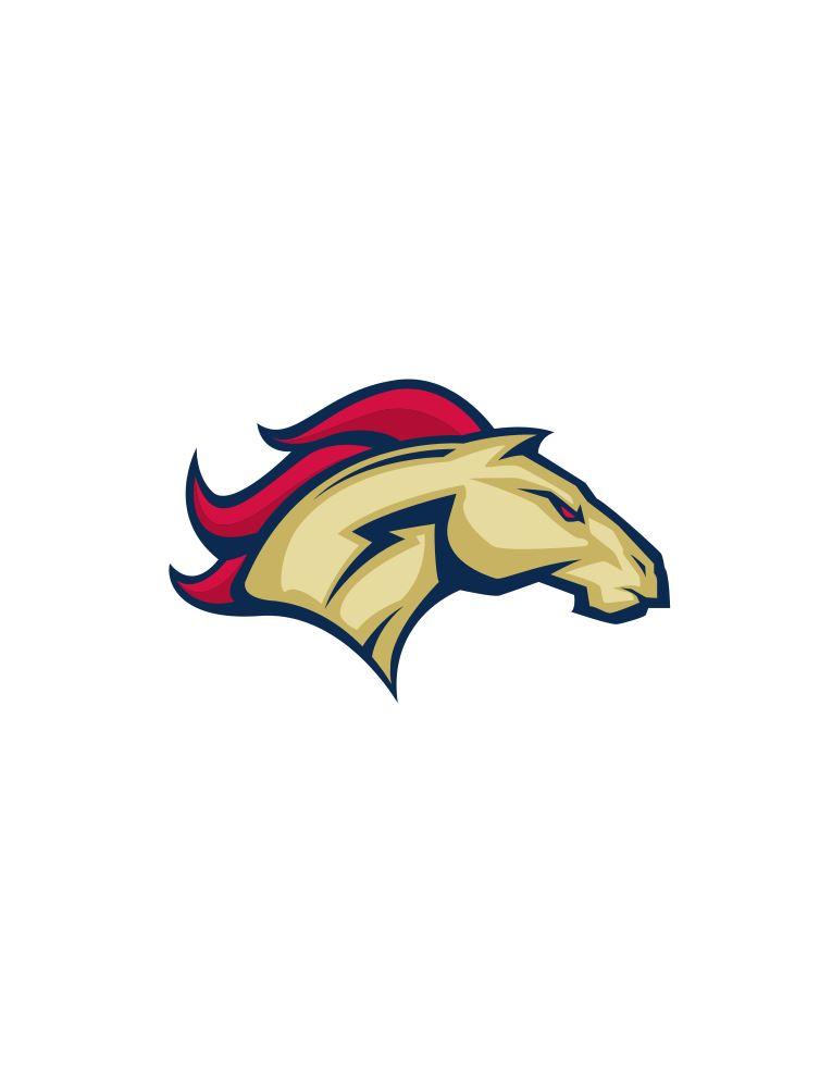 Herriman High School - Boys Varsity Football