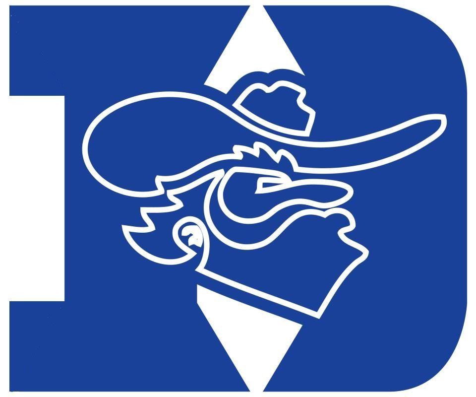 Dixie Hollins High School - Boys Varsity Football