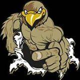 Volcano Vista High School - Boys Varsity Football