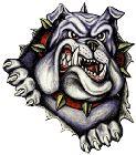 Thomasville High School - Lady Bulldog Varsity Soccer