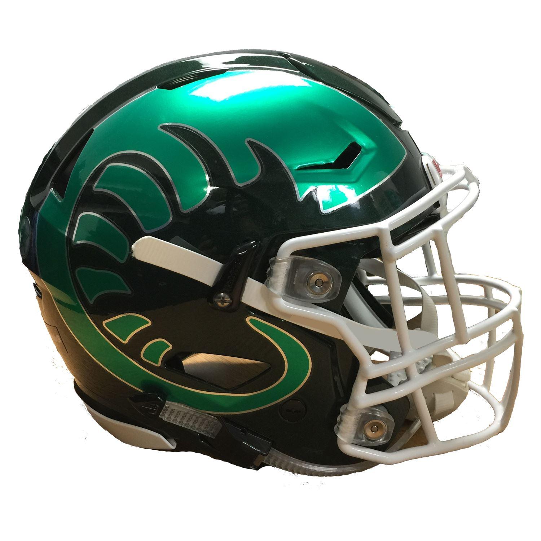 Grayslake Central High School - Boys Varsity Football