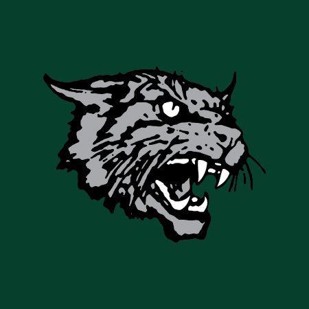 Arundel High School - Arundel High School Varsity Football