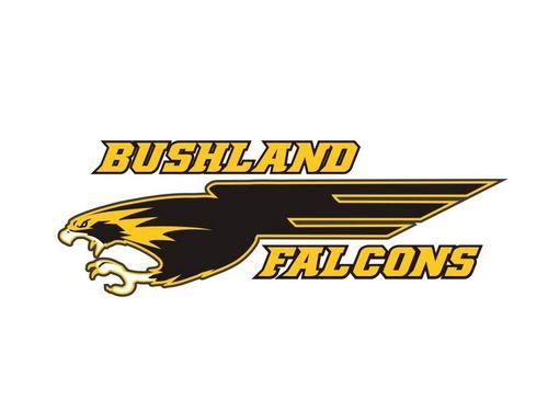 Bushland High School - Boys Varsity Football