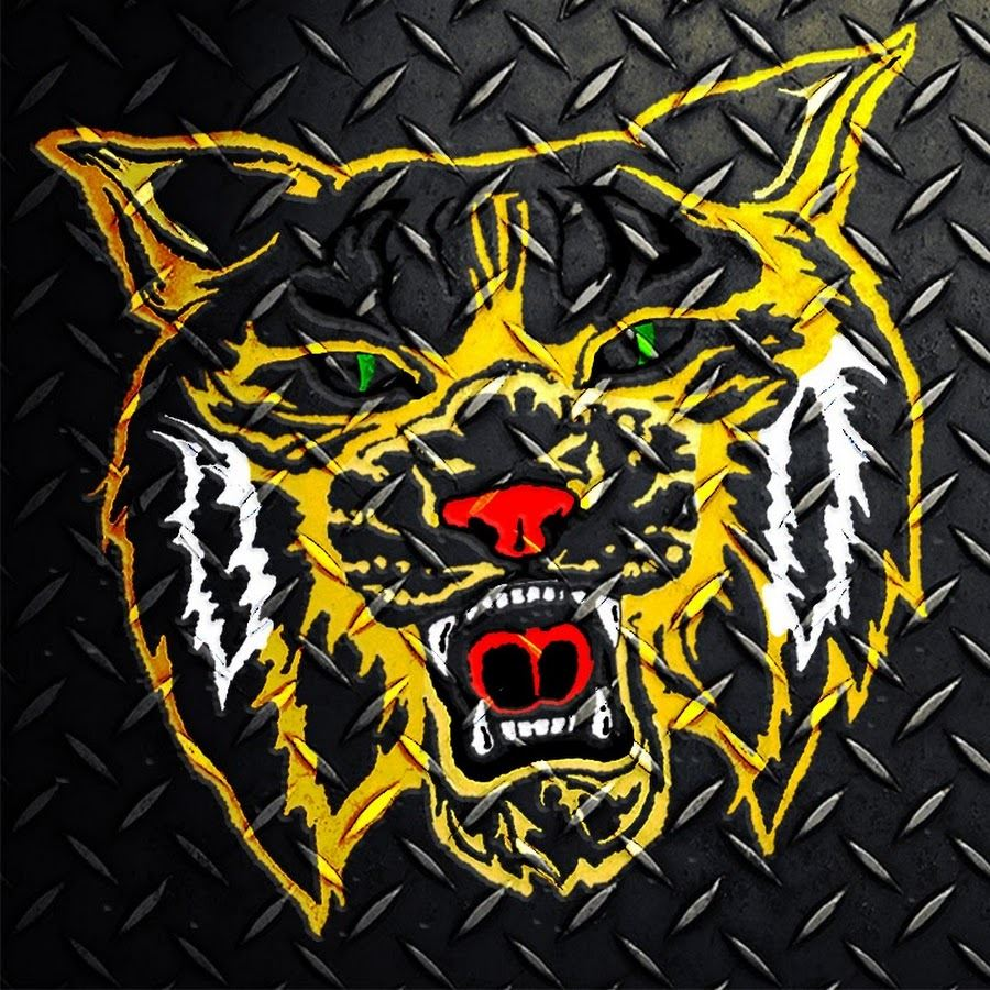 "Hixson High School - ""Wildcat"" Varsity Football"