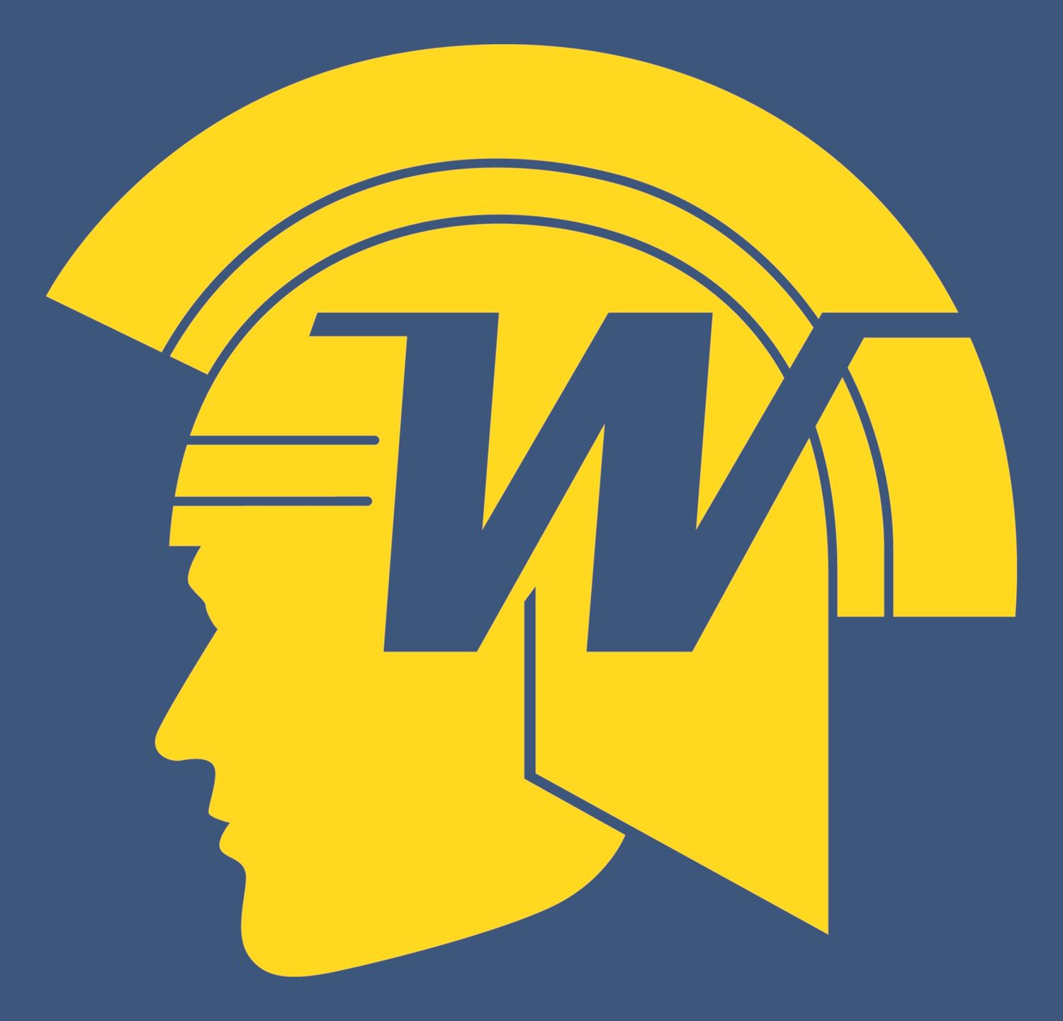 Wayzata High School - Boys Varsity Football