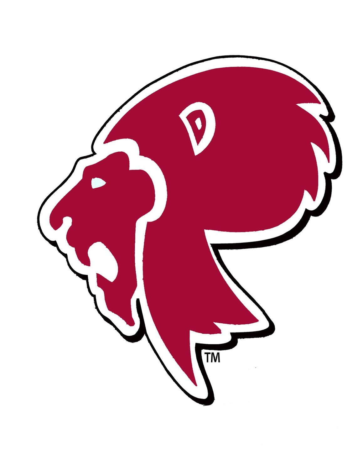 Boys Varsity Football Prattville High School Prattville Alabama Football Hudl