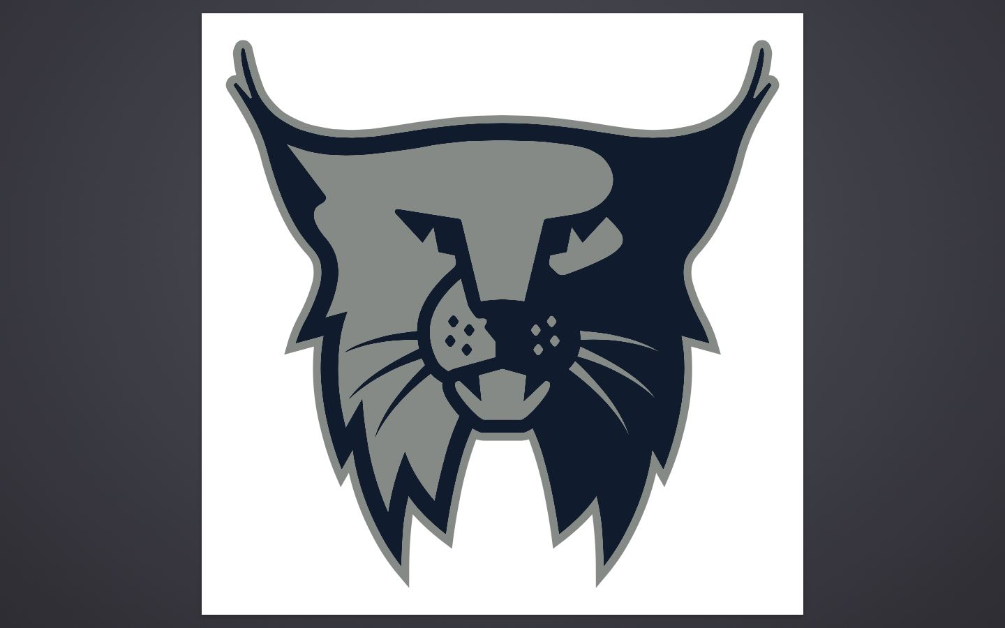 Grandview Heights High School - Boys Varsity Football