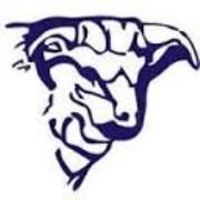Marfa High School - Shorthorns