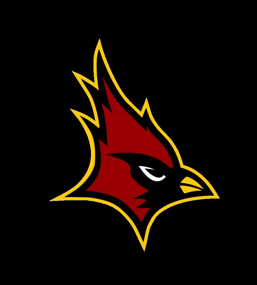 Cardinal Hayes High School - Boys Varsity Football