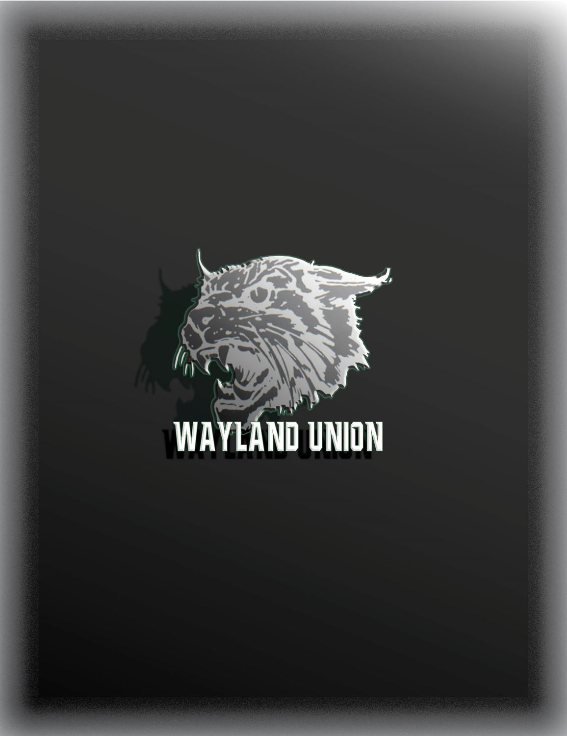 Wayland Union High School - JV Football