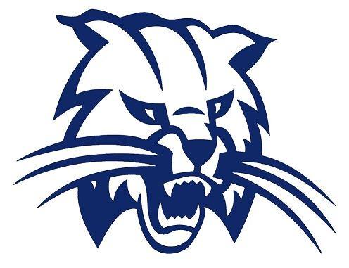 Woodbury Central High School - Wildcat Football
