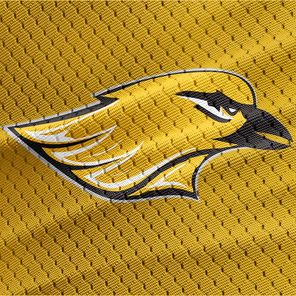 Hartford Orioles - WAAYFL - Hartford 5-8