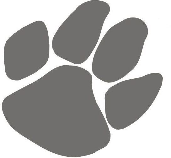 Wildcat Junior Football Association- GEJFA - Varsity