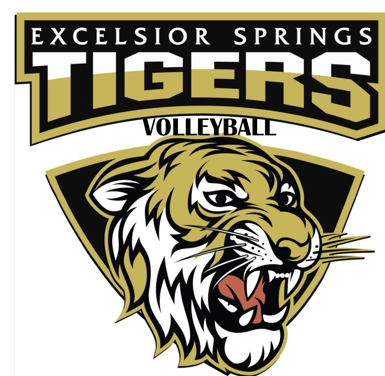 Excelsior Springs High School - Girls Varsity Volleyball