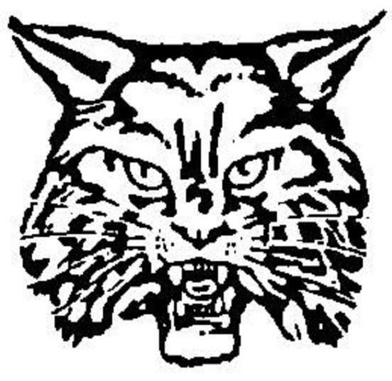 Newark High School - Boys Varsity Basketball