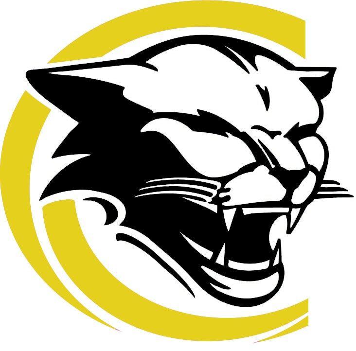 Honeoye Falls-Lima High School - Boys Varsity Lacrosse