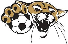 Crockett High School - Girls JV Brown/Gold Soccer