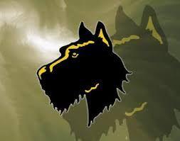 Tri-Valley High School - Tri-Valley Lady Dawgs