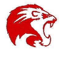 Foran High School - Foran Volleyball